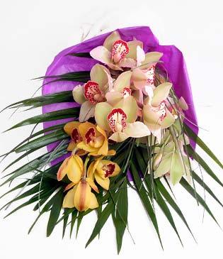 Bartın cicekciler , cicek siparisi  1 adet dal orkide buket halinde sunulmakta