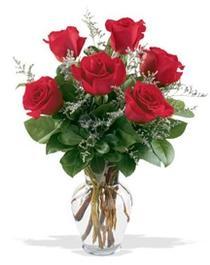 Bartın çiçek gönderme sitemiz güvenlidir  7 adet kirmizi gül cam yada mika vazoda sevenlere
