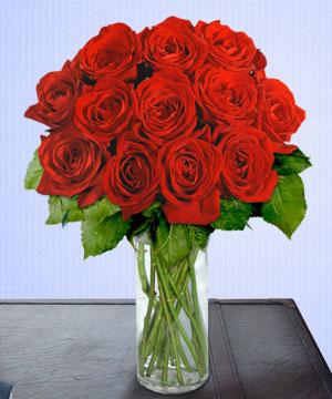 Anneme 12 adet cam içerisinde kirmizi gül  Bartın çiçek siparişi sitesi