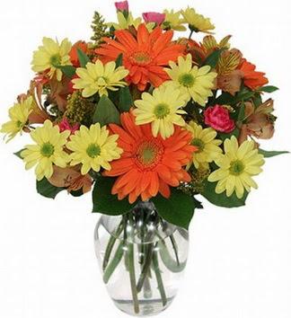 Bartın hediye sevgilime hediye çiçek  vazo içerisinde karışık mevsim çiçekleri