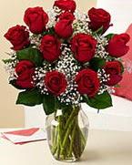 Sevgilime hediye 9 adet 1.ci kalite gül  Bartın anneler günü çiçek yolla