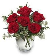Vazo içerisinde 5 adet kırmızı gül  Bartın çiçekçi mağazası