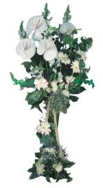 Bartın çiçek mağazası , çiçekçi adresleri  antoryumlarin büyüsü özel