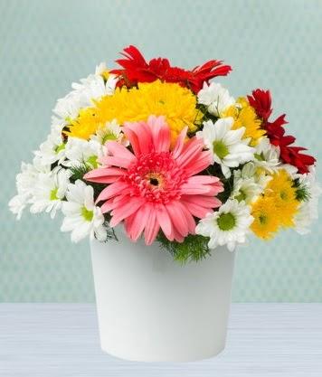 Seramik Vazoda Gelbera ve Papatya  Bartın çiçek gönderme