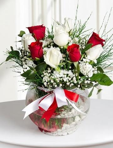 Aşk Küresi  5 beyaz 5 kırmızı gül fanusta  Bartın internetten çiçek satışı