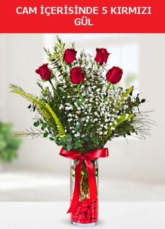 Cam içerisinde 5 adet kırmızı gül  Bartın çiçek siparişi sitesi