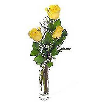 Bartın internetten çiçek siparişi  3 adet kalite cam yada mika vazo gül