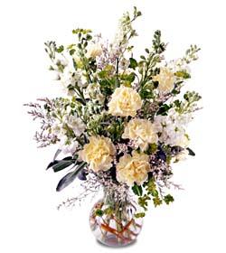 Bartın İnternetten çiçek siparişi  cam yada mika vazoda sebboy karanfil özel
