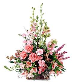 Bartın ucuz çiçek gönder  mevsim çiçeklerinden özel