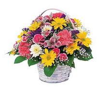 Bartın çiçek , çiçekçi , çiçekçilik  mevsim çiçekleri sepeti özel