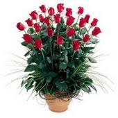 Bartın uluslararası çiçek gönderme  10 adet kirmizi gül cam yada mika vazo