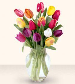 Bartın çiçekçiler  13 adet cam yada mika vazoda laleler