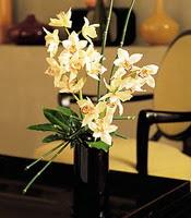 Bartın çiçekçiler  cam yada mika vazo içerisinde dal orkide