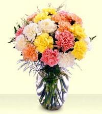 Bartın online çiçek gönderme sipariş  cam yada mika vazoda renkli karanfiller