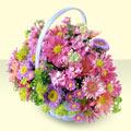 Bartın yurtiçi ve yurtdışı çiçek siparişi  bir sepet dolusu kir çiçegi  Bartın çiçek gönderme sitemiz güvenlidir