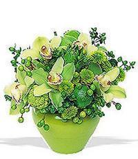 cam yada mika vazoda 5 adet orkide   Bartın online çiçekçi , çiçek siparişi