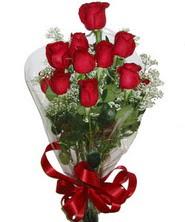 9 adet kaliteli kirmizi gül   Bartın online çiçekçi , çiçek siparişi