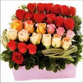 15 adet renkli gül ve cam   Bartın çiçekçi mağazası