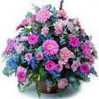 karisik mevsim kir çiçekleri  Bartın çiçek gönderme sitemiz güvenlidir