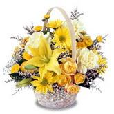 sadece sari çiçek sepeti   Bartın çiçek gönderme sitemiz güvenlidir