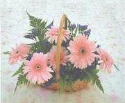gerbera çiçeklerinde sepet   Bartın çiçek yolla