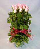 13 adet pembe gül silindirde   Bartın çiçek yolla