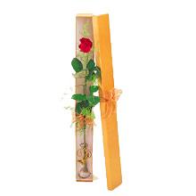 ince  kutuda  1  gül   Bartın çiçek yolla
