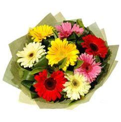 9 adet karisik gerbera demeti  Bartın çiçek mağazası , çiçekçi adresleri