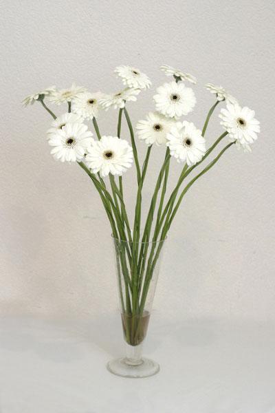 Bartın çiçek mağazası , çiçekçi adresleri  cam vazo içerisinde 17 adet sade gerbera