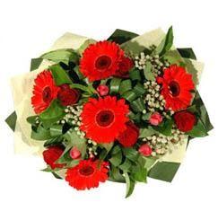 Bartın ucuz çiçek gönder   5 adet kirmizi gül 5 adet gerbera demeti