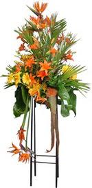 Bartın çiçek siparişi sitesi  perförje tanzimi dügün nikah ve açilislara