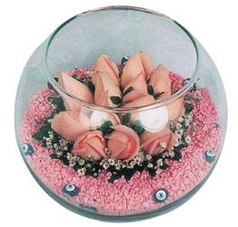 Bartın internetten çiçek satışı  cam fanus içerisinde 10 adet gül