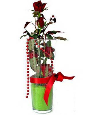 Bartın online çiçek gönderme sipariş  Cam yada mika içerisinde 9 adet kirmizi gül - sevdiklerinize özel