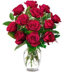 Bartın online çiçek gönderme sipariş  1 düzine kirmizi gül sevenlere özel vazo gülleri