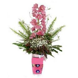 Bartın hediye çiçek yolla  cam yada mika vazo içerisinde tek dal orkide çiçegi