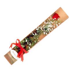 Bartın çiçek , çiçekçi , çiçekçilik  Kutuda tek 1 adet kirmizi gül çiçegi