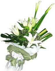 Bartın güvenli kaliteli hızlı çiçek  3 dal kazablanka çiçegi ve yesillikler