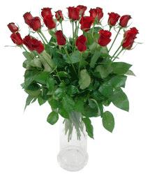 Bartın çiçekçi telefonları  11 adet kimizi gülün ihtisami cam yada mika vazo modeli