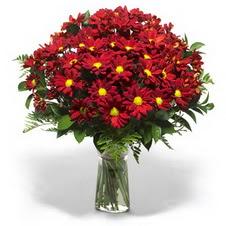 Bartın çiçek yolla  Kir çiçekleri cam yada mika vazo içinde