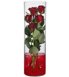 cam içerisinde 7 adet kirmizi gül  Bartın çiçekçiler