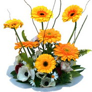 camda gerbera ve mis kokulu kir çiçekleri  Bartın çiçekçi telefonları