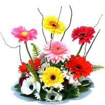 Bartın hediye çiçek yolla  camda gerbera ve mis kokulu kir çiçekleri