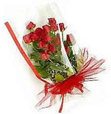 13 adet kirmizi gül buketi sevilenlere  Bartın çiçek siparişi vermek