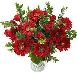 5 adet kirmizi gül 5 adet gerbera aranjmani  Bartın hediye çiçek yolla