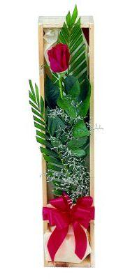 1 adet kutuda kirmizi gül  Bartın çiçek gönderme sitemiz güvenlidir