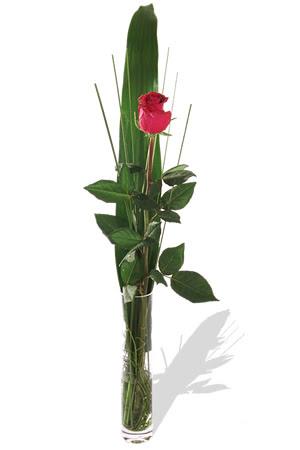 1 adet cam vazo içerisinde kirmizi gül  Bartın çiçek , çiçekçi , çiçekçilik