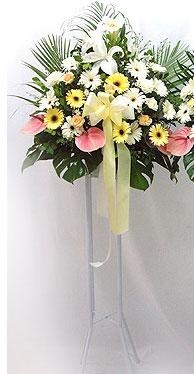 Bartın online çiçek gönderme sipariş   perförje çiçegi dügün çiçekleri