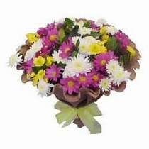 Bartın çiçekçi telefonları  Mevsim kir çiçegi demeti