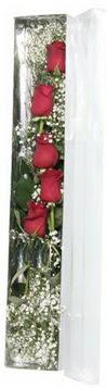 Bartın çiçek siparişi sitesi   5 adet gülden kutu güller