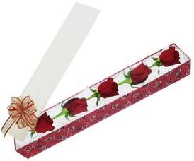 Bartın internetten çiçek satışı  kutu içerisinde 5 adet kirmizi gül